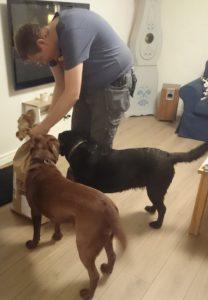 ... men även hundarna tyckte det var spännande att se vad som fanns i!