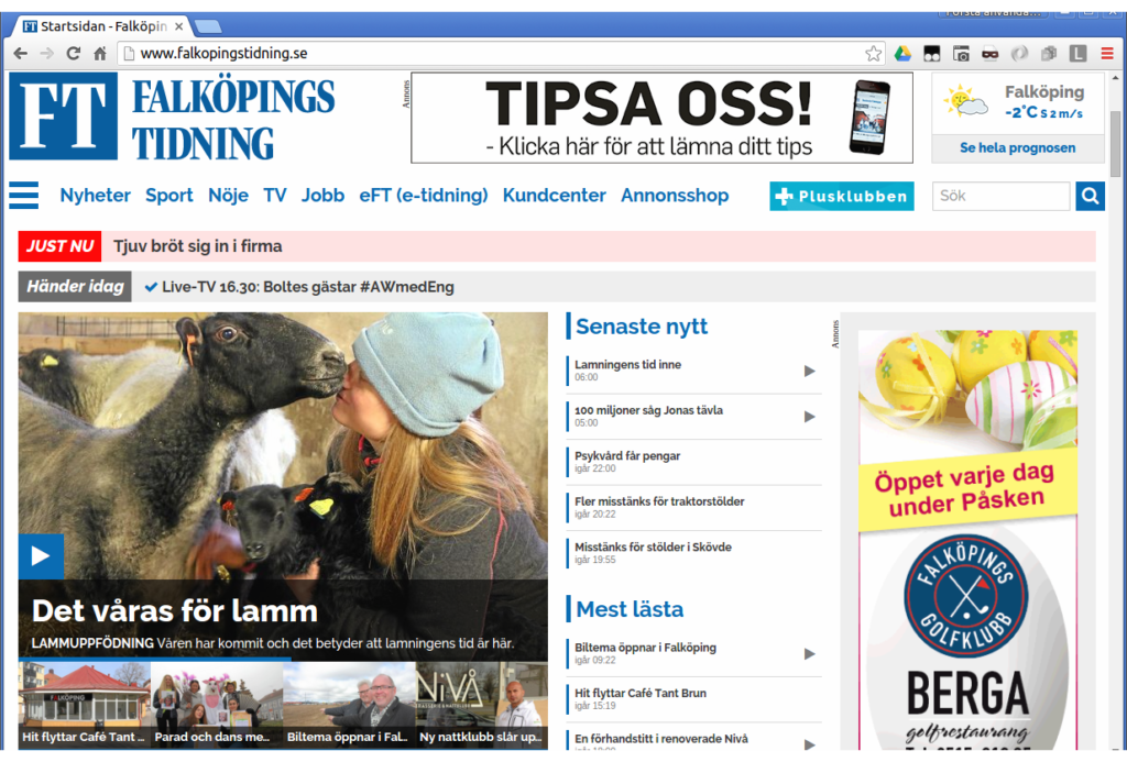 Sjögårdens lamm i Falköpings tidning